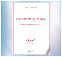 CIGREF - Entreprise Numérique - 2010