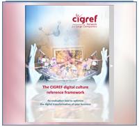 The CIGREF digital culture reference framework - 2014