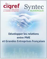 position-cigref-syntec