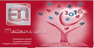 Voeux2015-Entreprise-numerique