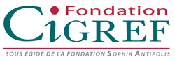 The Foundation CIGREF launches its third call for proposals related to the international research programme on Information Systems