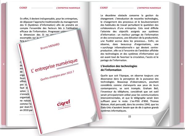 CIGREF-Entreprise-Numerique-strategies-2015