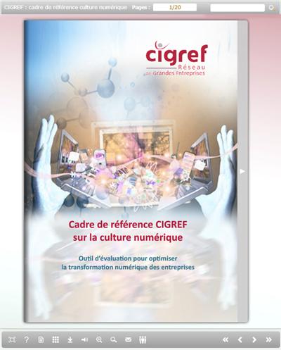 ebook - Cadre de référence CIGREF sur la culture numérique