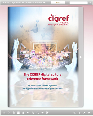 Ebook-CIGREF-digital-culture-reference-framework2