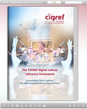 Ebook-CIGREF-digital-culture-reference-framework2
