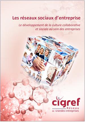 Rapport-CIGREF-RSE