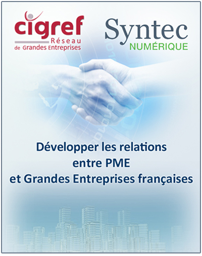 position-cigref-syntec
