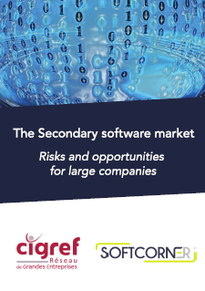 The Secondary software market: Risks and opportunities for large companies