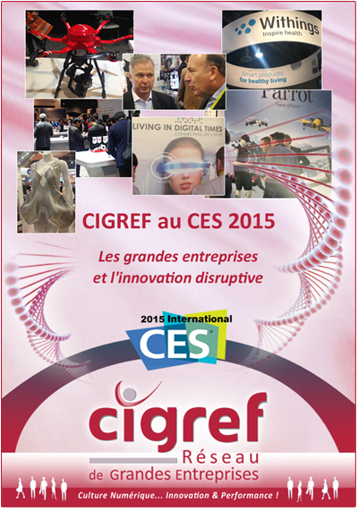 CIGREF-CES2015