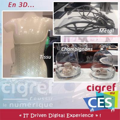CES-CIGREF-3D