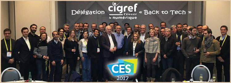 delegation-cigref