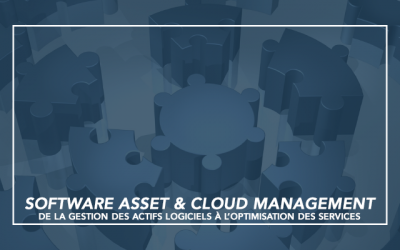 [Publication] Fonction SAM : De la gestion des actifs logiciels à l'optimisation des services
