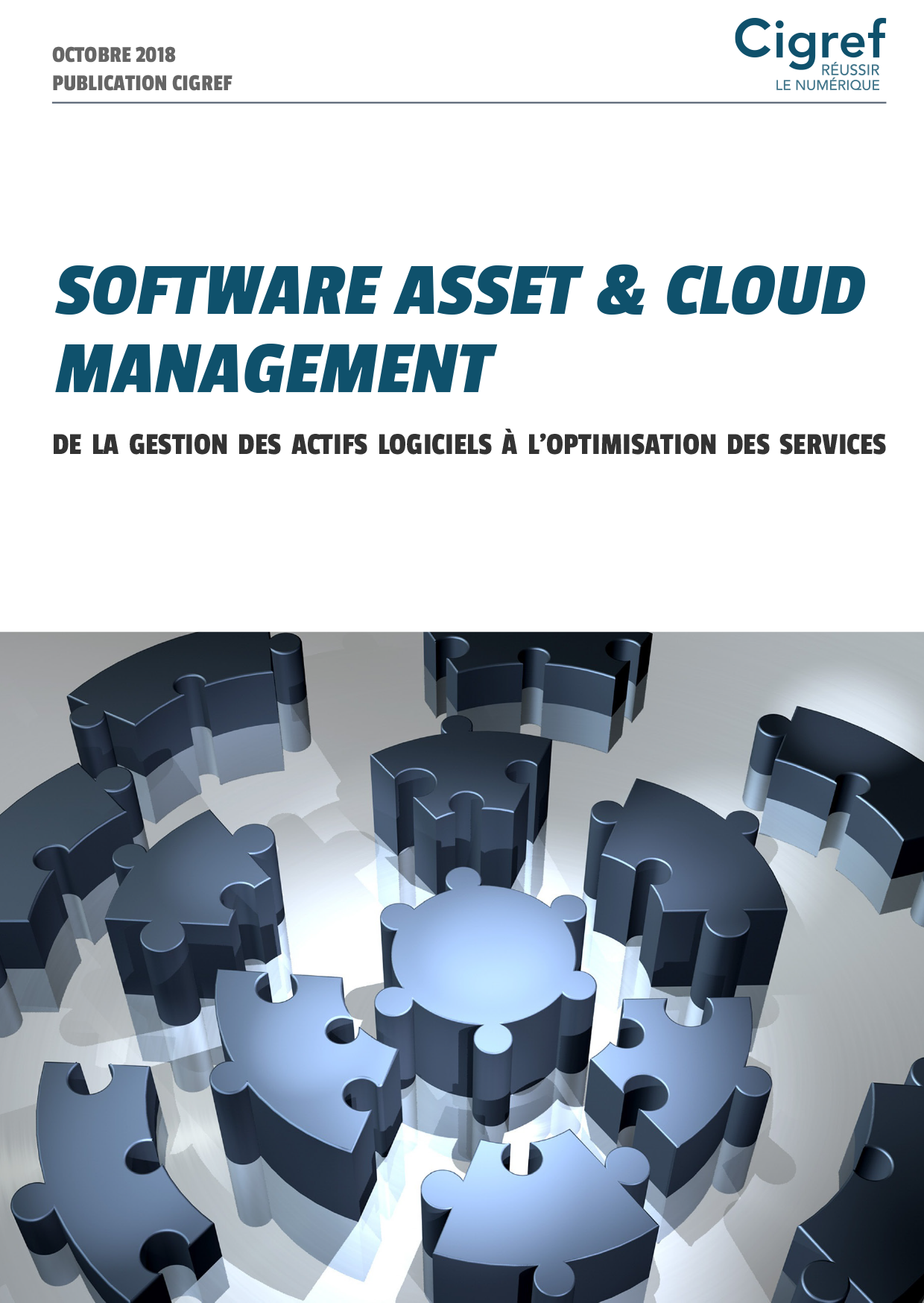 Publication Cigref Software Asset & Cloud Management