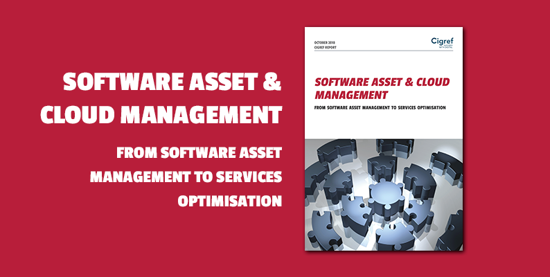 [Cigref Report] SAM : From software asset management to services optimisation