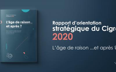 Rapport d'orientation stratégique du Cigref : l'âge de raison… et après ?