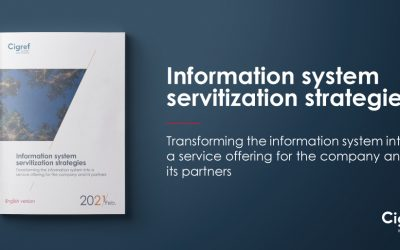 Information system servitization strategies: Transforming the information system into a service offering for the company and its partners