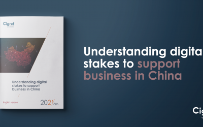 Understanding digital stakes to support business in China