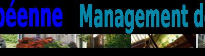 Les ateliers de la Chaire Européenne de Management de l'Immatériel
