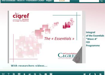 The CIGREF Foundation…